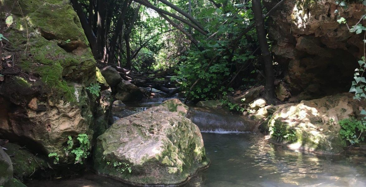 Amud stream, Upper Galilee, Israel