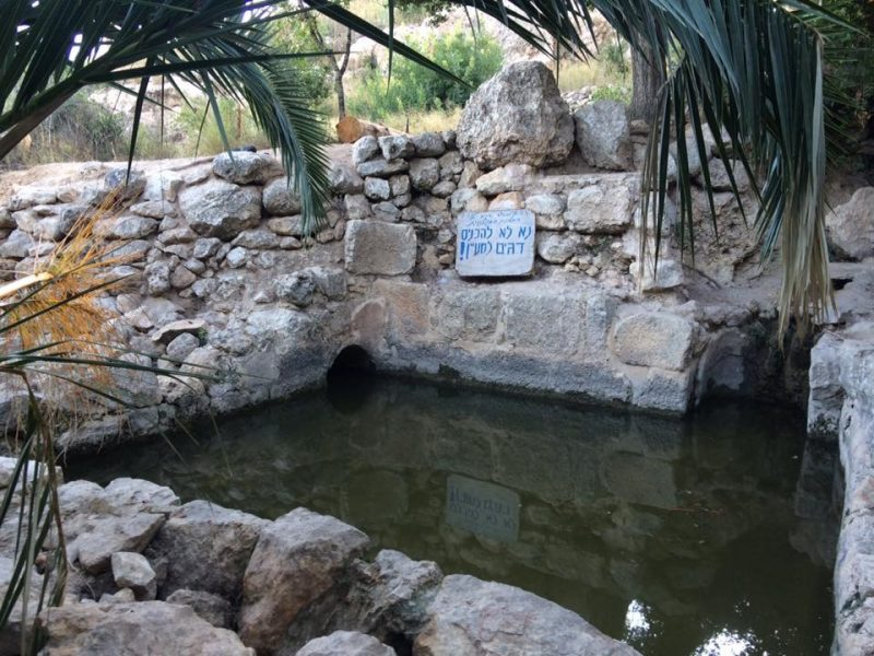 Ein Tamar, Hiking the springs trail near jerusalem