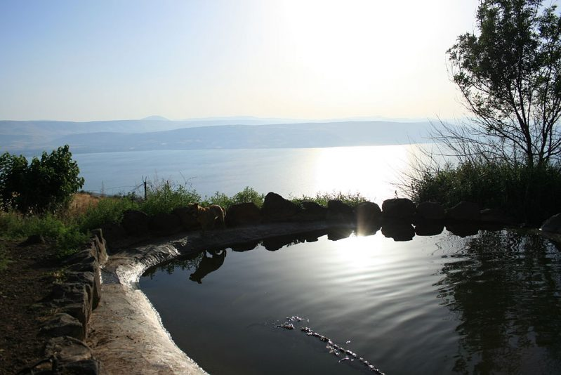 short hike to Ein Shoko Spring overlooking the sea of galilee