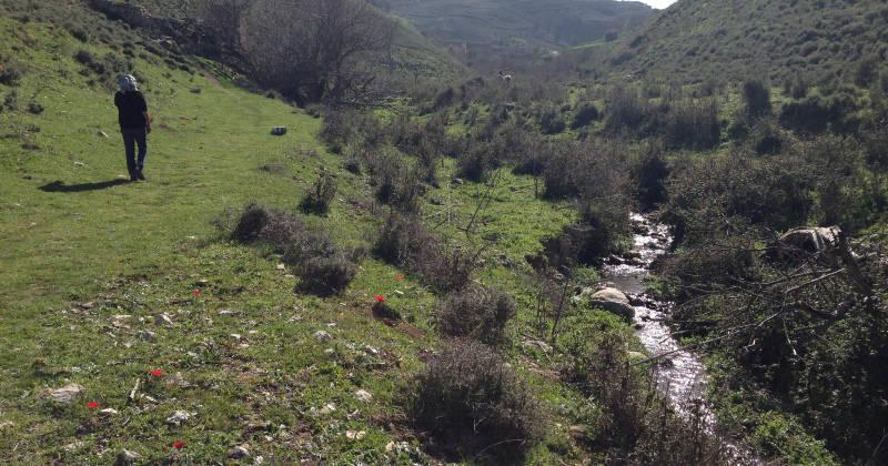 Hiking Along Gush Halav Stream