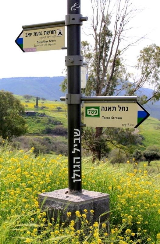 Typlical Golan Trail Sings