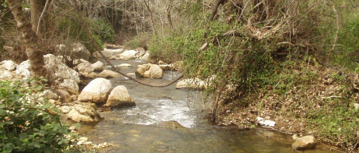 Water Rushing down the Kziv Stream