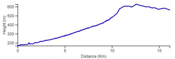 Elevation Graph INT near Arad