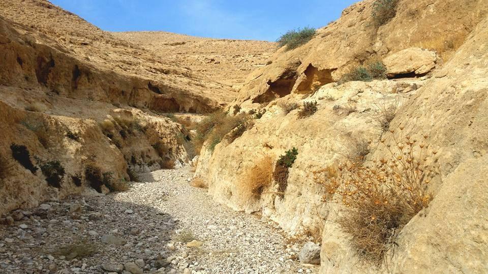 Wadi Kanfan
