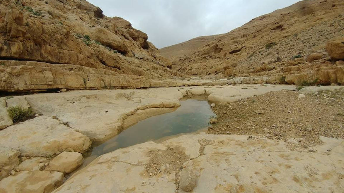 Water in Wadi Kanfan