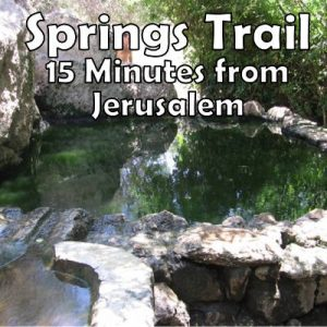 5 Springs in 1 Hike just 15 minutes from Jerusalem