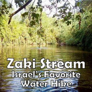 Zaki Stream Water Hike
