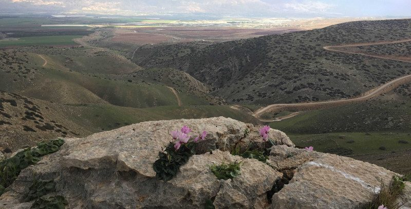 Jordan Valley view from the Gilboa
